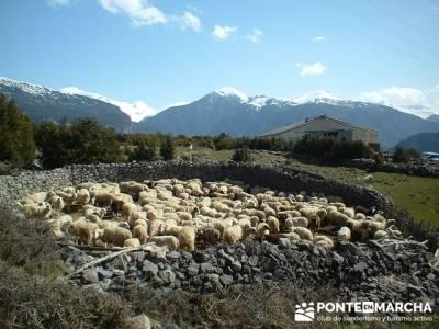 Multiaventura en Ordesa; rutas senderismo madrid; viajes agosto